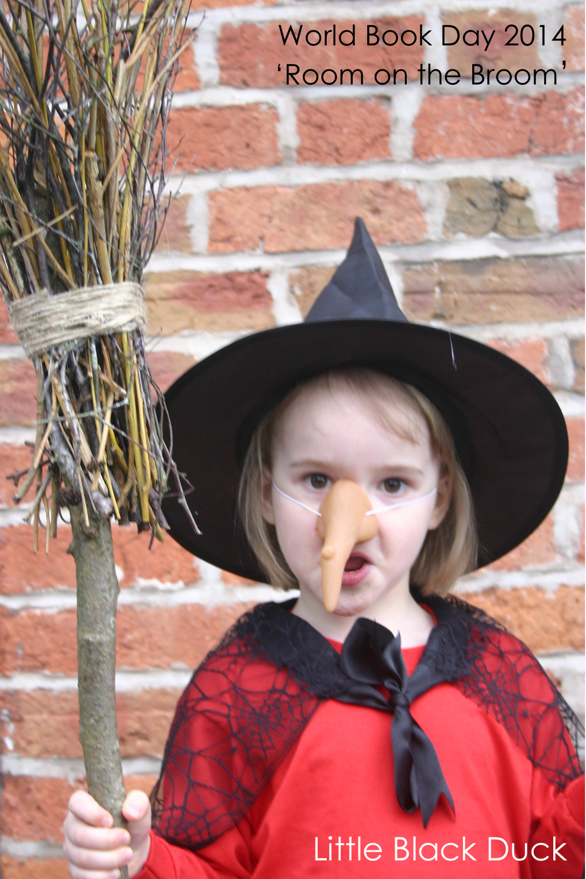 World Book Day 2014 :: Room on the Broom - Little Black Duck